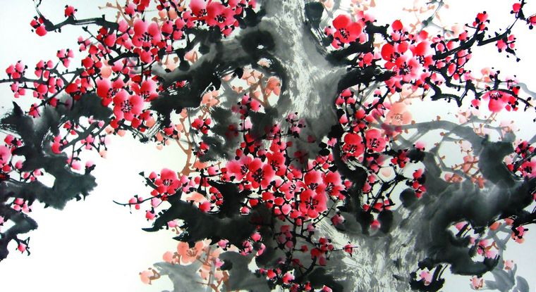 一朵梅花图片手绘