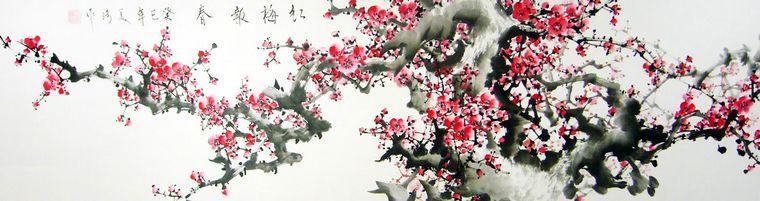 中国画梅花