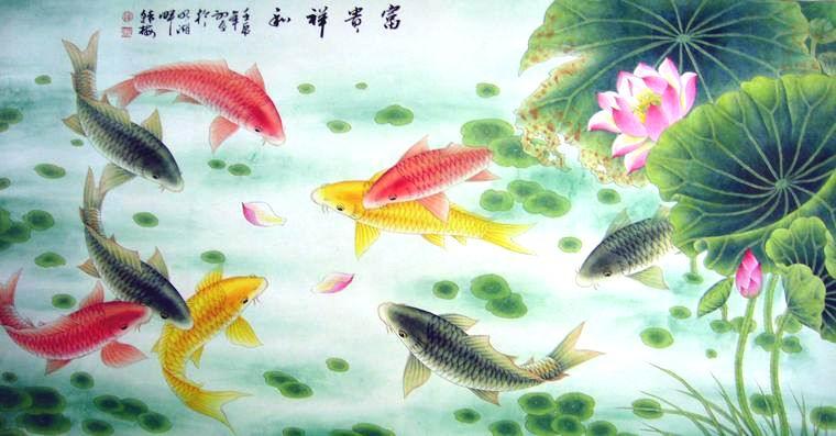 国画荷花鲤鱼